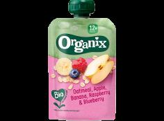 Oatmeal, Apple, Banana and Blueberry_organix